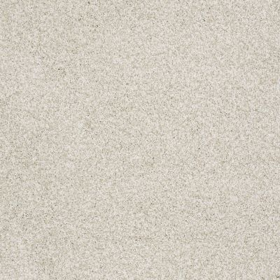 Shaw Floors Value Collections Take The Floor Tonal I Net Cashmere 00260_5E072