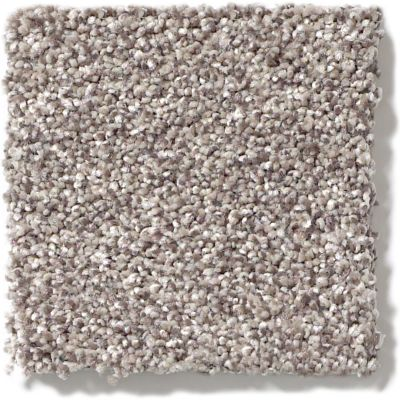 Shaw Floors Value Collections Take The Floor Tonal II Net Tundra 00760_5E073