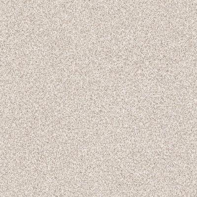 Shaw Floors Value Collections Take The Floor Tonal Blue Net Statuary 00167_5E074