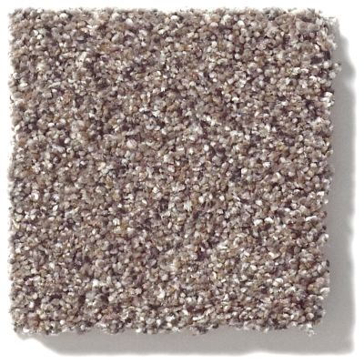 Shaw Floors Value Collections Take The Floor Accent II Net Storm 00771_5E076