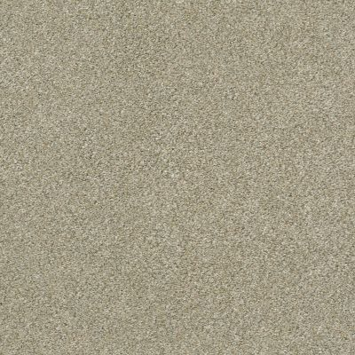 Shaw Floors Simply The Best Montage I Lunar Surface 140A_5E081