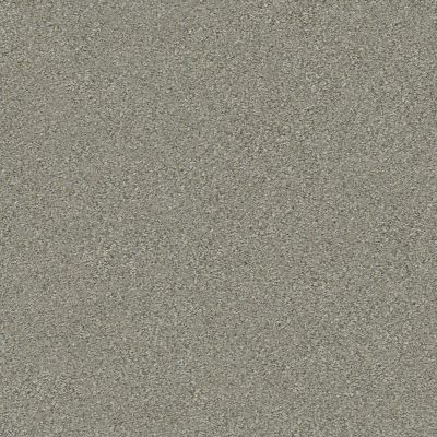 Shaw Floors Simply The Best Montage I Tempting Taupe 740A_5E081