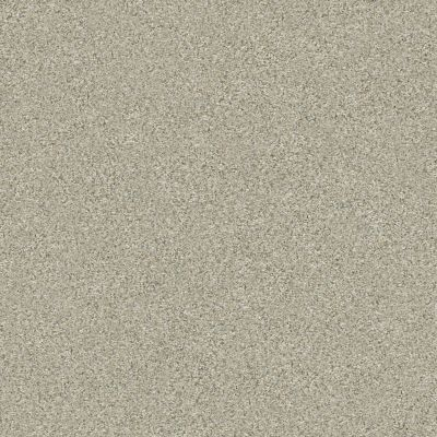 Shaw Floors Simply The Best Montage II Spun Wool 130A_5E082