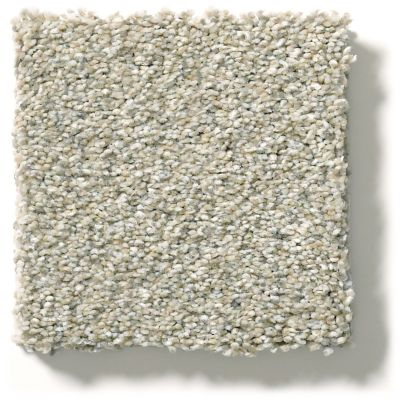 Shaw Floors Montage II Spun Wool 130A_5E082
