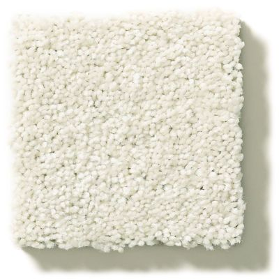 Shaw Floors Value Collections Attainable Solid Net Blizzard 100S_5E094