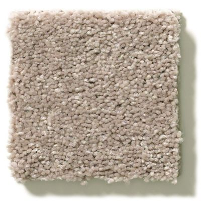 Shaw Floors Value Collections Attainable Solid Net Pebble Path 101S_5E094