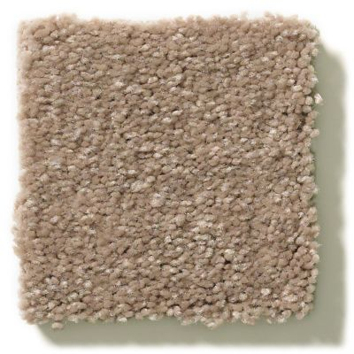 Shaw Floors Value Collections Attainable Solid Net Cork 701S_5E094