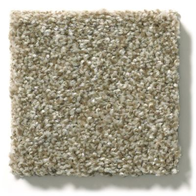 Shaw Floors Value Collections Attainable Solid Net Grecian Tan 720T_5E094