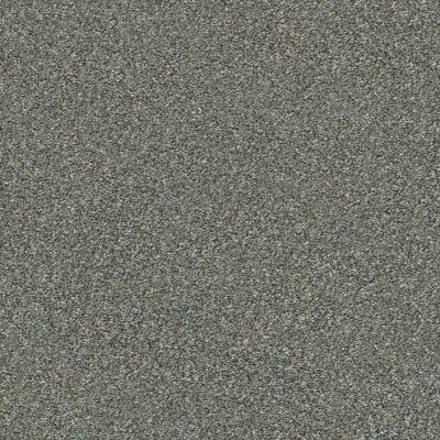 Shaw Floors Value Collections Attainable Net Cedar Ridge 721T_5E094