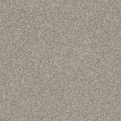 Shaw Floors Value Collections It's All Right Net Concrete 00510_5E095
