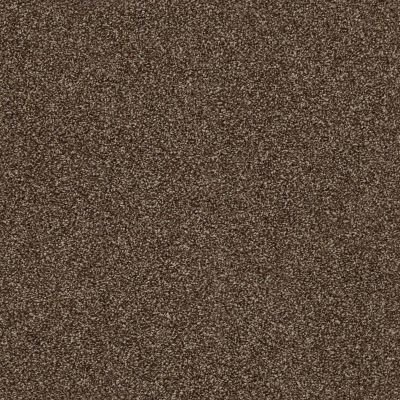 Shaw Floors Value Collections It's All Right Net Rich Leather 00714_5E095