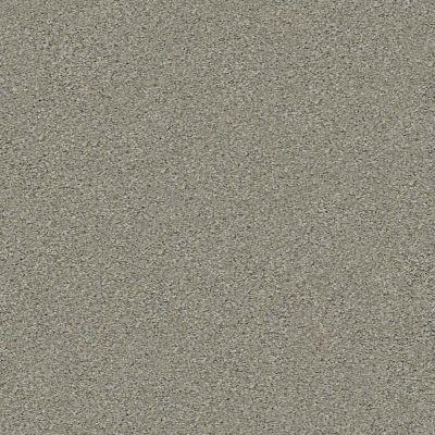 Shaw Floors Simply The Best Momentum I Net Rockslide 740A_5E096