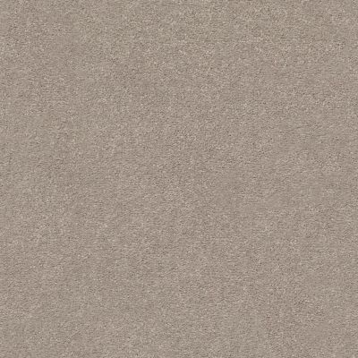 Shaw Floors Value Collections Montage I Net Parisian Lights 102S_5E098