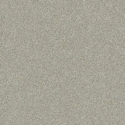 Shaw Floors Value Collections Montage I Net Morning Frost 131A_5E098