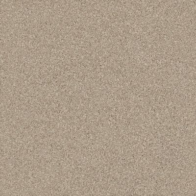 Shaw Floors Value Collections Montage I Net Midtown Brown 720T_5E098