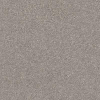 Shaw Floors Value Collections Montage II Net Polished Stone 103S_5E099