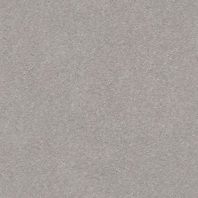 Shaw Floors Value Collections Montage II Net Classic Silver 500S_5E099