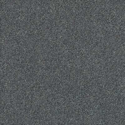 Shaw Floors Value Collections Montage II Net Carbon Copy 520T_5E099