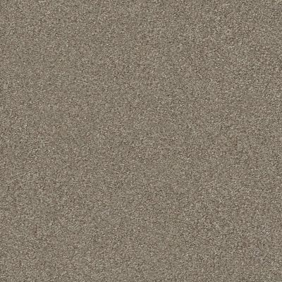 Shaw Floors Simply The Best Montage II Net Midtown Brown 720T_5E099