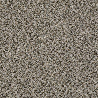 Shaw Floors Break Away (b) Dolphin 00500_5E242