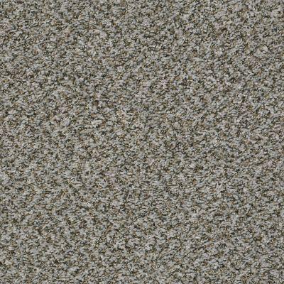 Shaw Floors Break Away (b) Fossil 00531_5E242