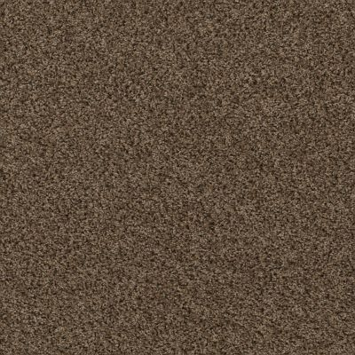 Shaw Floors Break Away (b) Good Earth 00712_5E242