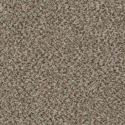 Shaw Floors Break Away (b) Toast 00730_5E242