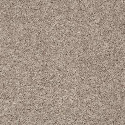 Shaw Floors Break Away (s) Soft Taupe 00501_5E243