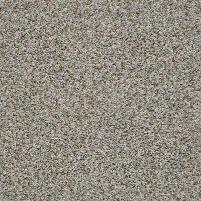 Shaw Floors Break Away (t) Exposed Beam 00510_5E244