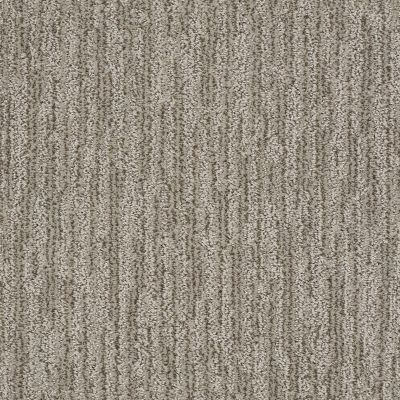 Shaw Floors Simply The Best Easy Fit Mesa 00102_5E254