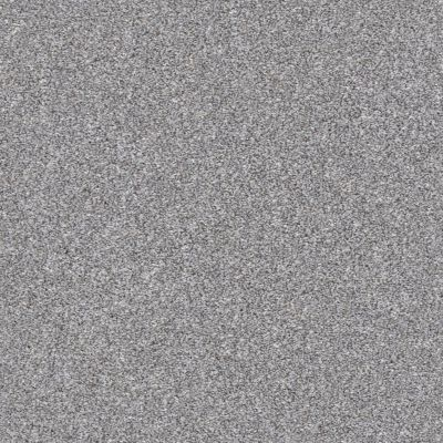 Shaw Floors Simply The Best Make It Mine I Arctic Shadow 00521_5E255