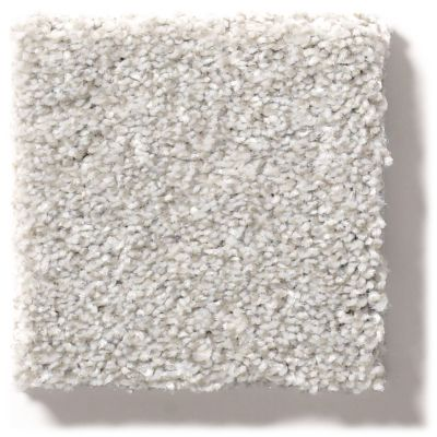 Shaw Floors Simply The Best Make It Mine II Soft Fleece 00120_5E256