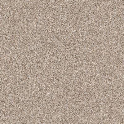 Shaw Floors Simply The Best Make It Mine II Grecian Tan 00720_5E256