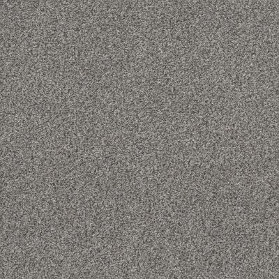 Shaw Floors Simply The Best Within Reach II Grey Fox 00504_5E260