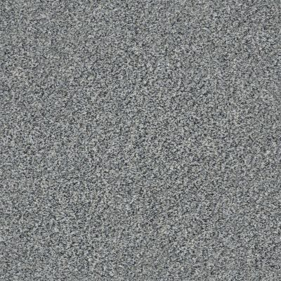 Shaw Floors Simply The Best Within Reach III Grey Fox 00504_5E261