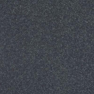 Shaw Floors Simply The Best Solidify I 12′ Iron 00501_5E262