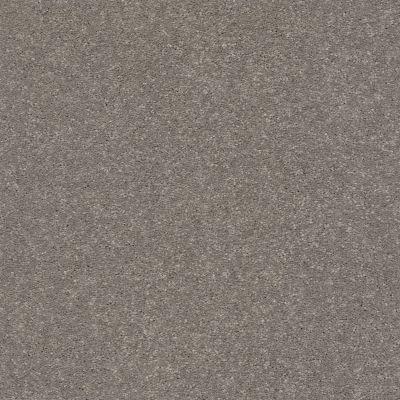 Shaw Floors Solidify I 15′ Tree Bark 00700_5E263
