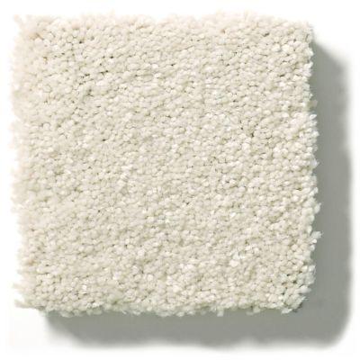 Shaw Floors Simply The Best Solidify II 12′ Minimalist 00100_5E264