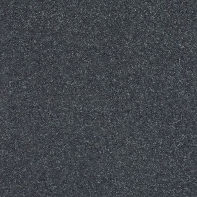 Shaw Floors Simply The Best Solidify II 12′ Iron 00501_5E264