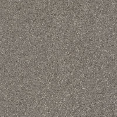 Shaw Floors Simply The Best Solidify II 12′ Tree Bark 00700_5E264