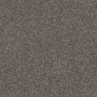 Shaw Floors Simply The Best Solidify II 12′ Pewter 00701_5E264