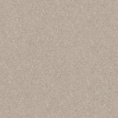 Shaw Floors Solidify II 15′ Dreamy 00103_5E265