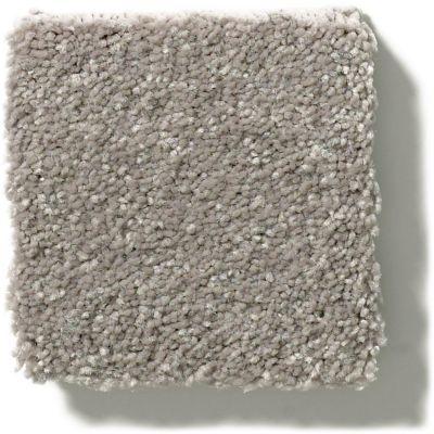Shaw Floors Simply The Best Solidify III 12′ Tree Bark 00700_5E266