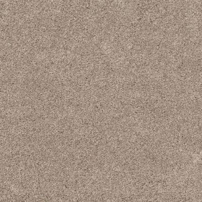 Shaw Floors Bellera Calm Serenity II Washed Linen 00103_5E272