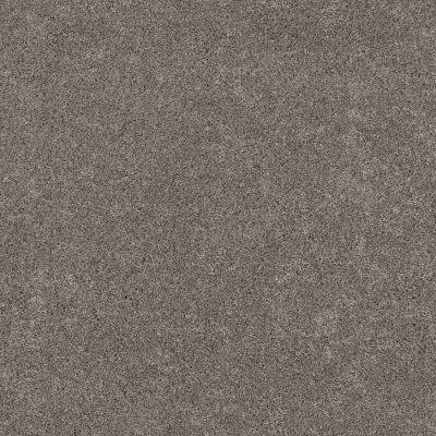 Shaw Floors Bellera Calm Serenity II Dark Maple 00702_5E272