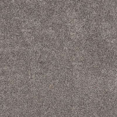 Shaw Floors Bellera Calm Simplicity II Shoreline 00116_5E273