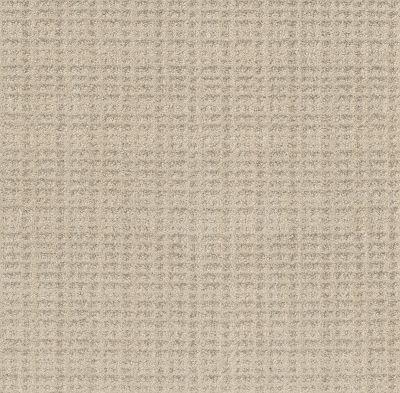 Shaw Floors Bellera Charming Transition Butter Cream 00107_5E274