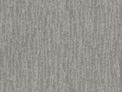 Shaw Floors Bellera Nature Within Grey Fox 00504_5E278