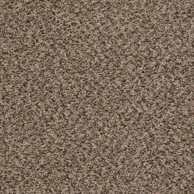 Shaw Floors Value Collections Break Away (b) Net Safari 00112_5E281