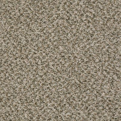 Shaw Floors Value Collections Break Away (b) Net Sugar Cookie 00132_5E281